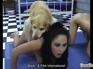 Once It Got Laborious She Told Him To Fuck Dog